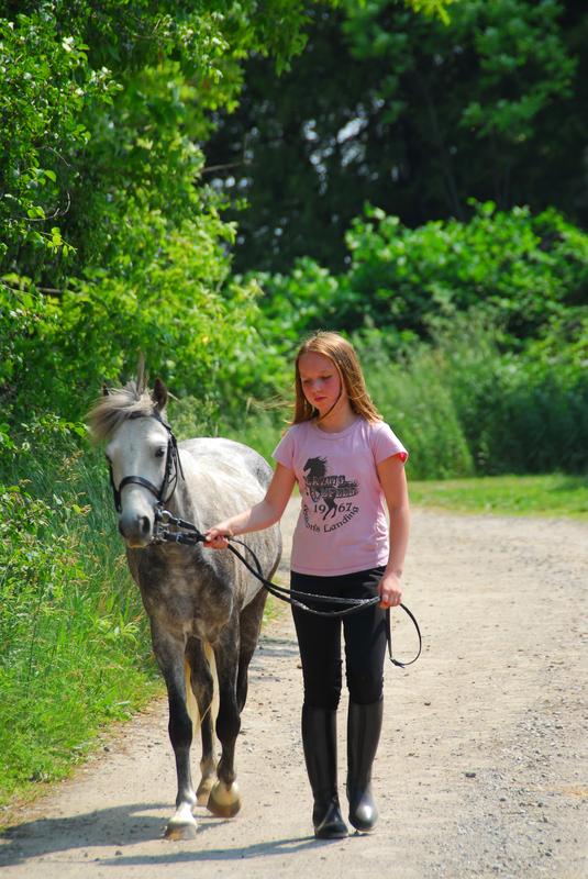 Horses Inspire! Program